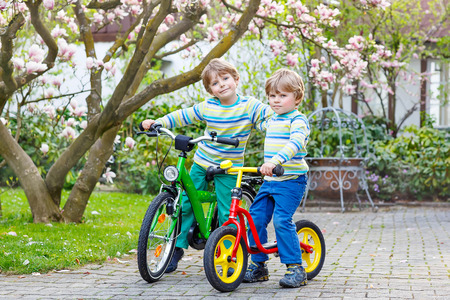 Two little kid boys biking with bicycles in park or garden on warm spring day. Active leisure for kids outdoors.