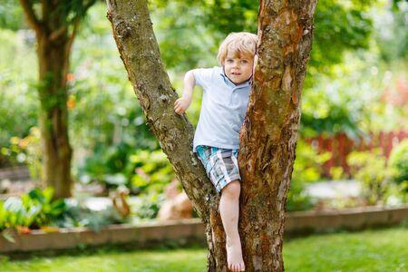 escalando: Cute little boy niño disfrutando escalada en árbol. Niño del niño de aprender a escalar, que se divierten en el jardín doméstico en día cálido y soleado.