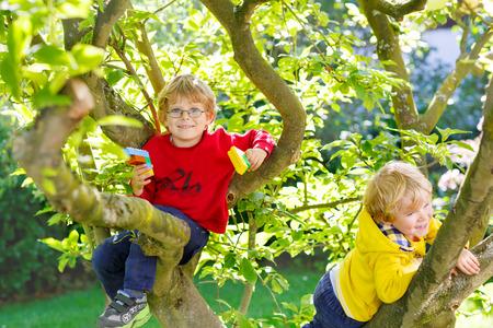 niño trepando: Dos niños pequeños chico rubio activa que disfruta de la escalada en árbol. Los niños del niño de aprender a escalar, que se divierten en el jardín interno en caliente día soleado, al aire libre. Foto de archivo