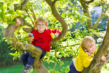 Two active little blond kid boys enjoying climbing on tree. Toddler children learning to climb, having fun in domestic garden on warm sunny day, outdoors. Stok Fotoğraf