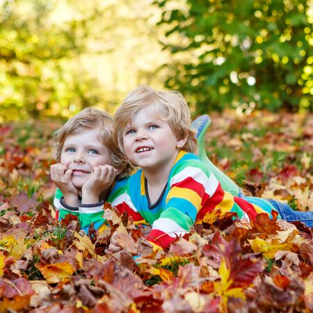 kiddies: Two little twin boys lying in autumn leaves in colorful clothing. Happy siblings having fun in autumn park on warm day. Stock Photo