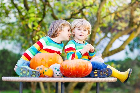 Two little blond twins boys making jack-o-lantern for halloween in autumn garden, outdoors