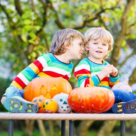 Two little blond twins boys making jack-o-lantern for halloween in autumn garden, outdoors. Happy kids aving fun together Banco de Imagens