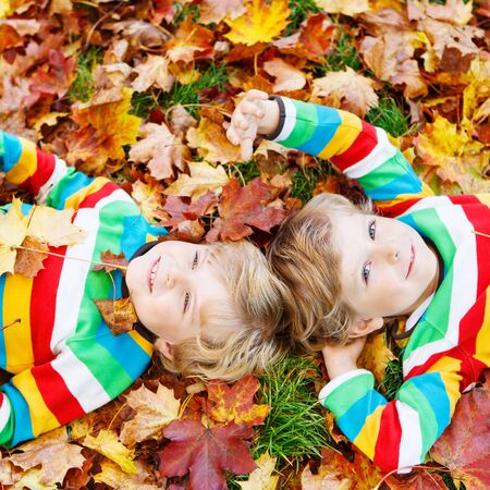 kiddies: Two blond boys lying in autumn leaves in colorful clothing. Happy siblings having fun in autumn park on warm day.