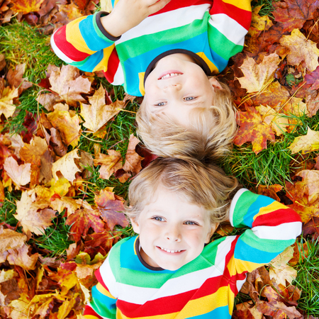 kiddies: Two happy children lying in autumn leaves in colorful clothing. Happy siblings having fun in autumn park on warm day.