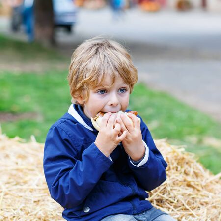 blonde boy: Beautiful adorable little kid boy eating hot dog or German sausage on thanksgiving or halloween pumpkin festival, outdoors. child enjoying warm autumn day. Stock Photo