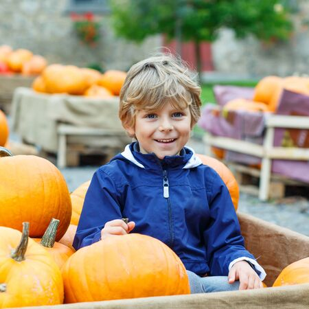 little: Beautiful happy little preschool kid boy on a pumpkin farm with huge vegetables. Child celebrating traditional festival halloween or thanksgiving.