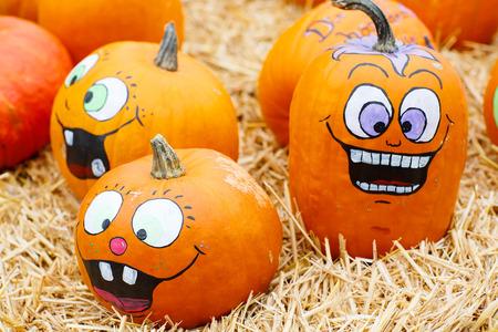 팜 또는 패치에 통 통 하 고 육즙 휴가 호박의 무리. 잭 olantern 또는 추수 감사절에 대 한 오렌지 호박입니다. 무서운 얼굴로 장식 된 자기