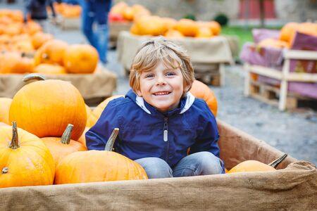 persona feliz: Hermosa feliz ni�o peque�o ni�o de preescolar en una granja de calabaza con enormes verduras. Ni�o celebrando fiesta tradicional de Halloween o acci�n de gracias. Foto de archivo