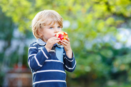 first day of school: Funny little kid boy with apple on his first day to elementary school or nursery. Outdoors.  Back to school, kids, lifestyle concept. Child eating healthy food