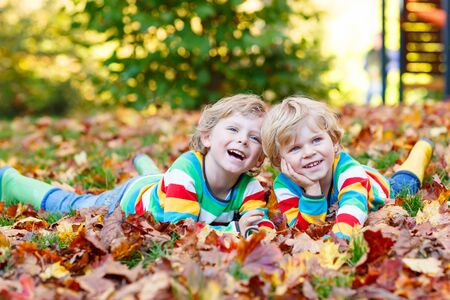 kiddies: Two little kid boys lying in autumn leaves in colorful clothing. Happy siblings having fun in autumn park on warm day.