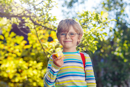 background people: Happy little kid boy with glasses, books, apple and backpack on his first day to school or nursery. Child outdoors on warm sunny day, Back to school concept