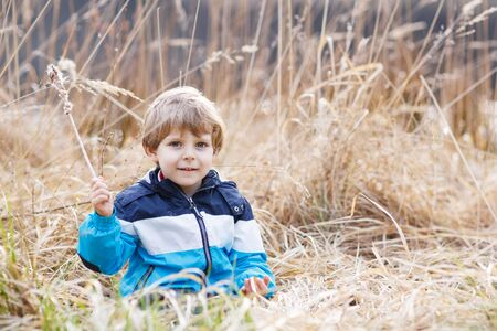 bulrush: Little blond boy having fun with bulrush near forest lake, nature on cold spring or autumn day.