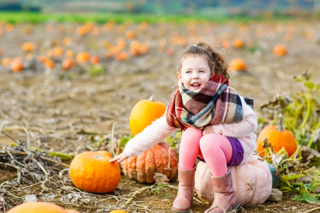 Adorable little kid girl having fun on pumpkin patch. Traditional family festival with children, thanksgiving and halloween concept. Cute farmer sitting on huge pumpkin.