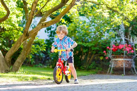 domestic garden: Active blond kid boy in colorful clothes driving bicycle in domestic garden. Toddler child dreaming and having fun on warm summer day. outdoors games for children