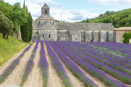 gordes: Abbey of Senanque and blooming rows lavender flowers. Gordes, Luberon, Vaucluse, Provence, France, Europe. Stock Photo