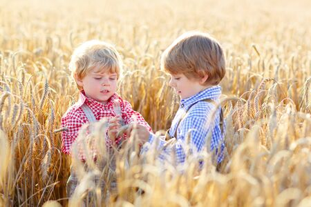 warm shirt: Two happy kid boys with blond hairs in yellow wheat field on warm summer day. Funny Children in traditional German bavarian clothes, leather shorts and check shirt