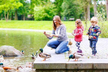feed: Mother and her children feeding ducks in summer park, adorable kid boy and girl, siblings having fun together