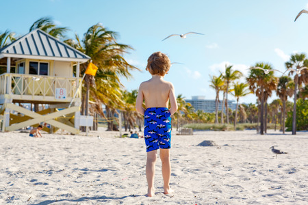 key biscayne: Blond little kid boy having fun on Miami beach, Key Biscayne. Happy cute child playing with sand and running near ocean.