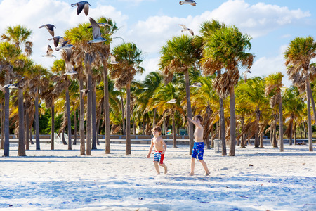 key biscayne: Two little kids boys having fun on tropical beach, happy best friends playing with birds, friendship concept. Siblings brothes in swim trousers. Key Biscayne, Miami, Florida. Stock Photo
