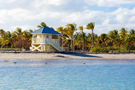 key biscayne: Beautiful Crandon Park Beach located in Key Biscayne in Miami, Florida, USA