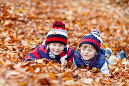 kiddies: Two little friends boys lying in autumn leaves in colorful clothing. Happy siblings kids having fun in autumn forest or park on warm fall day. With hats and scarfs