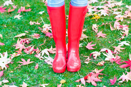 gum boots: Legs of young woman  in rainboots. Woman in red gum boots, with maple foliage. Autumn concept