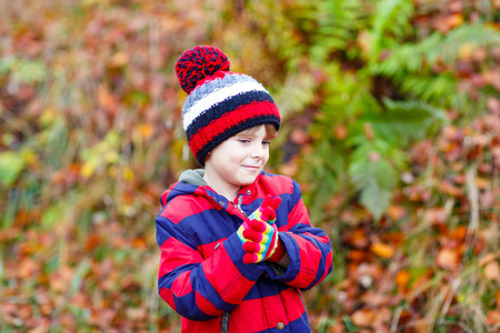 kiddies: Portrait of happy cute little kid boy with autumn leaves background in colorful clothing. Funny child having fun in fall forest or park on cold day. With hat and gloves Stock Photo