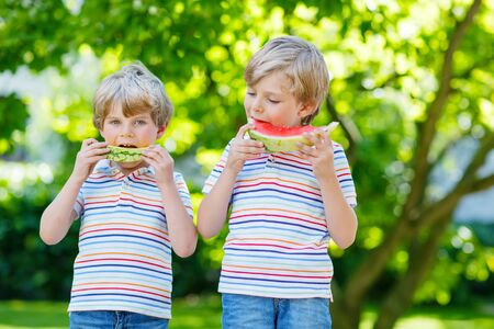 Two little preschool kid boys with blond hairs eating red and yellow watermelon in summer garden.