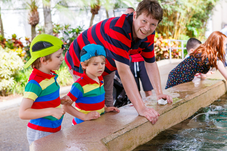 Young father and two little kid boys feeding rays in a recreation area. Man and his sons, preschool children having fun with observing fishes. photo