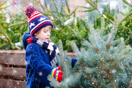 choosing: Cute little smiling kid boy holding christmas tree. Happy child in winter clothes, hat, gloves choosing xmas tree in outdoor shop. Family, tradition, celebration concept Stock Photo