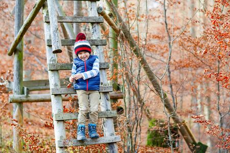 kiddies: Portrait of happy cute little kid boy with autumn leaves background in colorful clothing. Funny child having fun in fall forest or park on cold day.