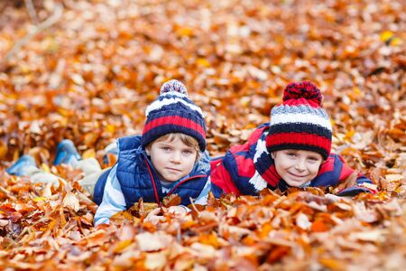 kiddies: Two little brothers boys lying in autumn leaves in colorful clothing. Happy siblings kids having fun in autumn forest or park on warm fall day. With hats and scarfs