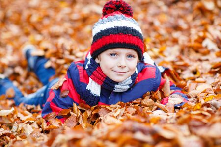 kiddies: Portrait of happy cute little kid boy with autumn leaves background in colorful clothing. Funny child having fun in fall forest or park on cold day. With hat and scarf