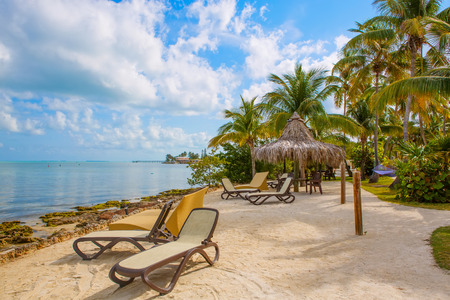 resort beach: Tropical resort with chaise longs and hammocks near palms on sandy beach, Key West, Florida, USA