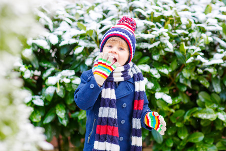 outoors: Winter portrait of kid boy in colorful clothes, outdoors during snowfall. Active outoors leisure with children in winter on cold snowy days. Happy child having fun with snow