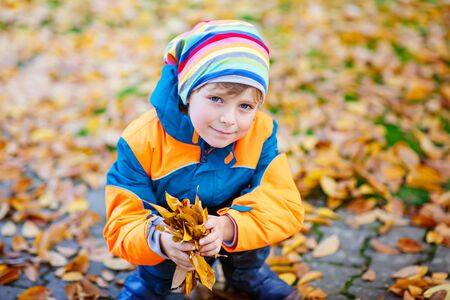 happy cute little kid boy with autumn leaves playing in garden