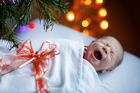 snug: One week old newborn baby wrapped in blanket near Christmas tree Stock Photo