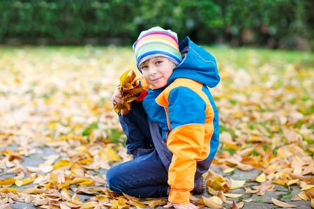 kiddies: happy cute little kid boy with autumn leaves playing in garden