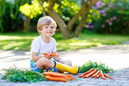 Funny little kid boy with carrots in domestic garden Stock Photo