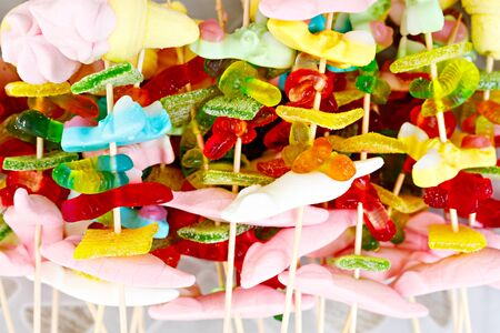 marshmellow: Colorful marshmellows and different gum sweets on skewers. Unhealthy food