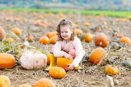 little girl farming on pumpkin patch Stock Photo - 84082914