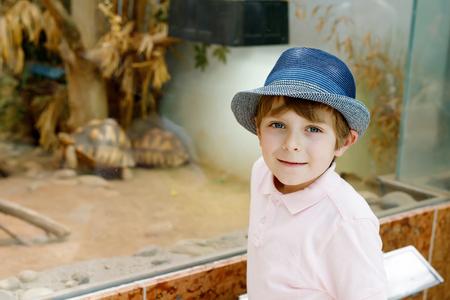 작은 꼬마 소년 테라리움에서 큰 거북을 존경해라.