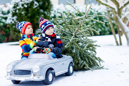 Two little kid boys driving toy car with Christmas tree