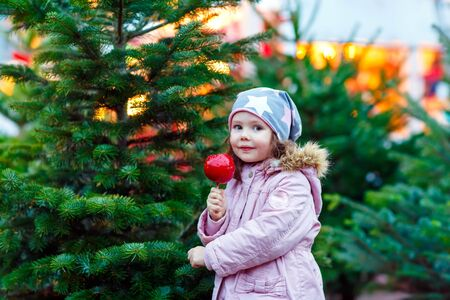 little kid girl eating crystalized apple on Christmas market Stock Photo