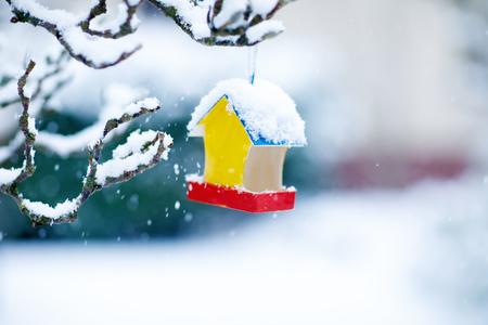 Colorful bird house in winter outdoors. Snowfall. Bird feeding concept.