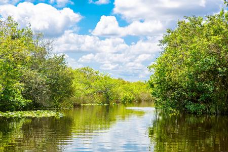 フロリダの湿地帯、エアボートに乗るアメリカのエバーグレーズ国立公園で