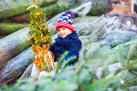 beautiful smiling little boy holding christmas tree
