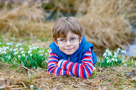 Cute blond preschool kid boy discovering first spring flowers, beautiful snowdrops