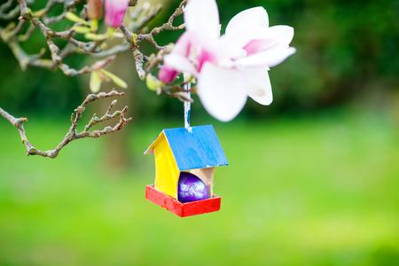 Primer del huevo de Pascua colorido en casa del pájaro en el árbol floreciente de la magnolia Foto de archivo - 93976311